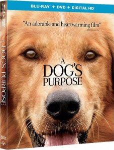 adogspurposebluray